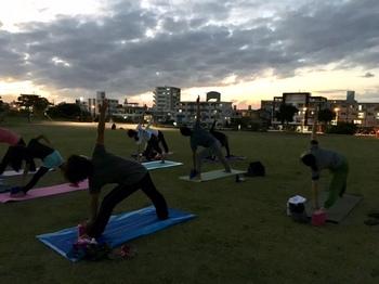 yoga_y7.jpg